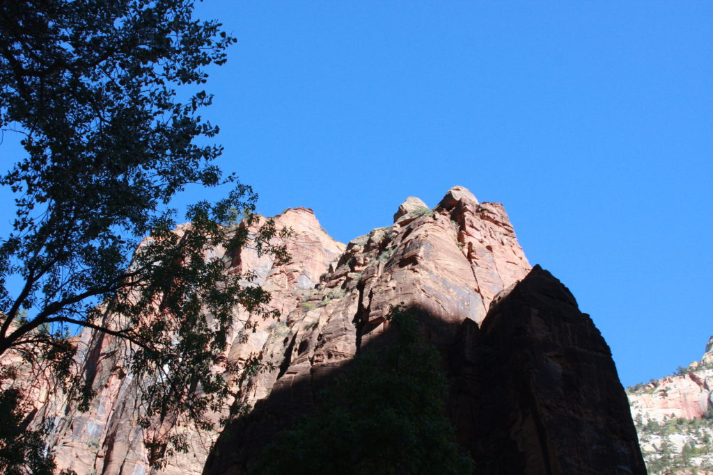Zions National Park_Easy Zion Wedding